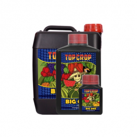 Big One Top Crop-250ml